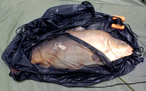 http://shop.profish.com.ua/data/images/monster_carp_zip_sack.jpg